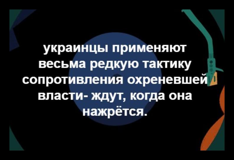 Координатор СММ ОБСЕ Фриш посетит тюрьмы на оккупированной территории Донбасса в сентябре, - Ирина Геращенко - Цензор.НЕТ 6960