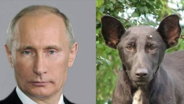 Политзаключенный в оккупированном Крыму Эмир-Усеин Куку объявил голодовку - Цензор.НЕТ 7679