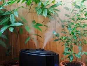 5 неполадок увлажнителей воздуха