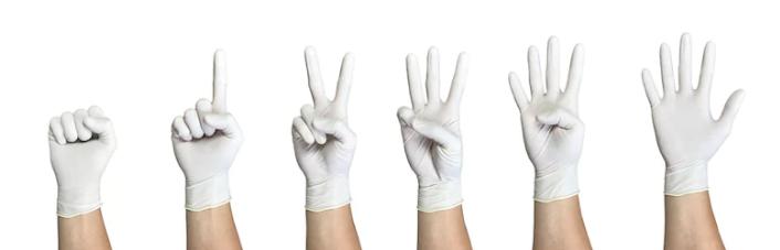 перчатки.png