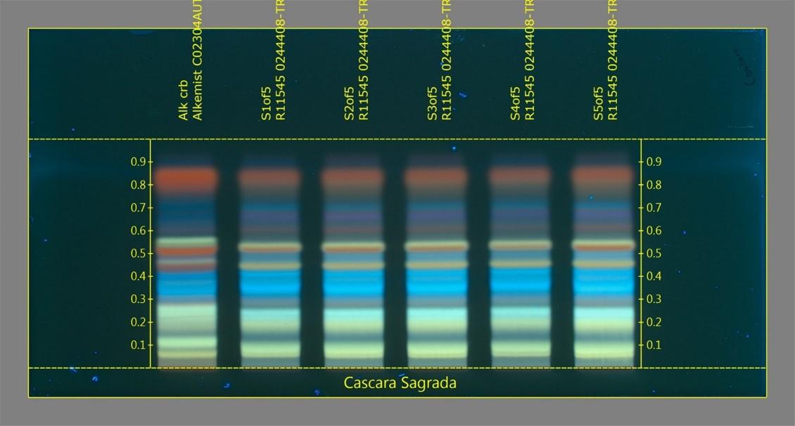 Пример Каскары Саграды на хронографе.