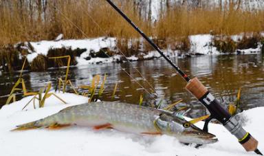 зим рыбалка.png