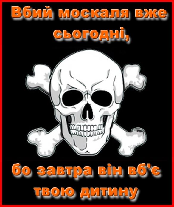 Ворог за добу здійснив 6 обстрілів позицій ЗСУ, жоден український воїн не постраждав, знищено чотирьох терористів, - штаб ОС - Цензор.НЕТ 5779