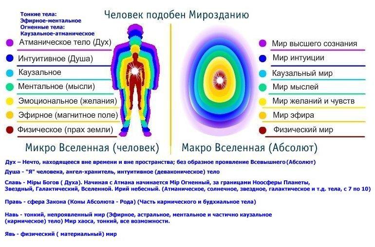 Вселенная создается вниманием человека, наблюдателя  656a3a8e7b17f0642bedafd5b93618d3