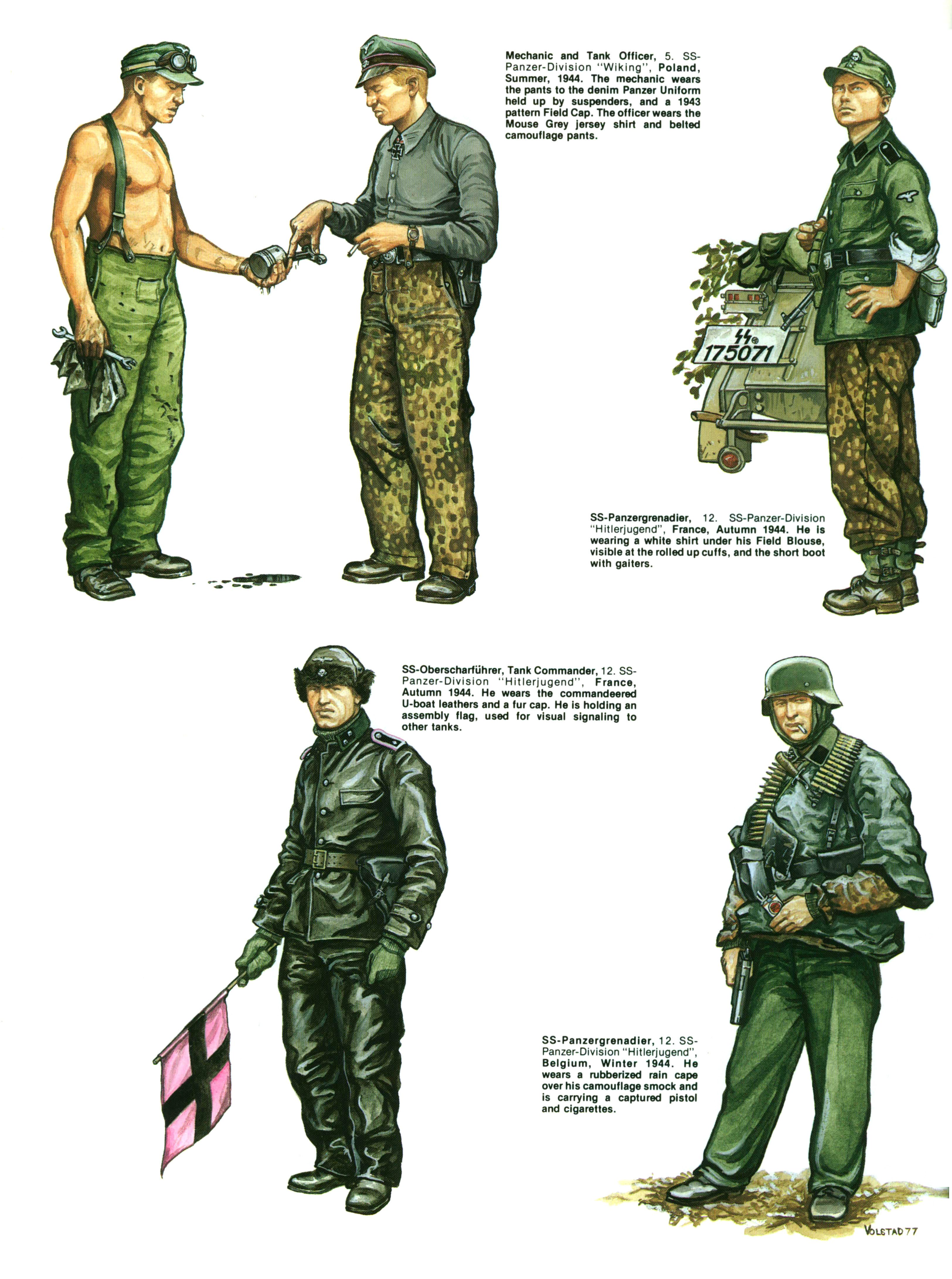 №6014 SS Armor A Pictorial History of the Armored Formations of the Waffen-SS-8.jpg