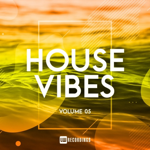 VA - House Vibes Vol 05 (2019)