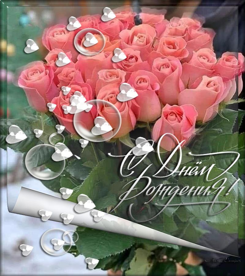 розы с д р.png