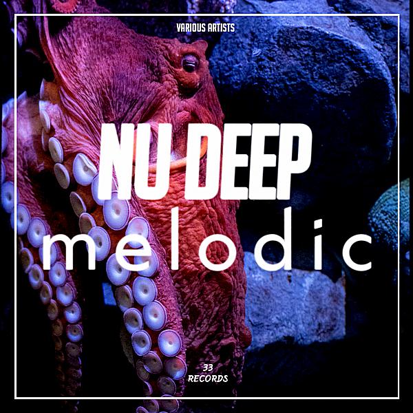 VA - Nu Deep Melodic (2019)