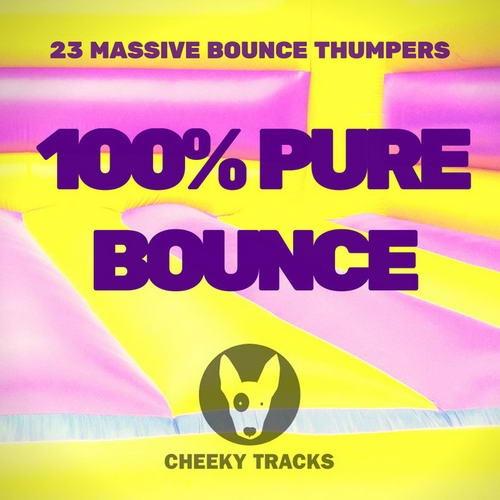 VA - 100 % Pure Bounce (2019)