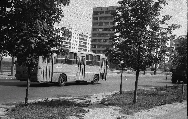 T8U170QcdFU.jpg