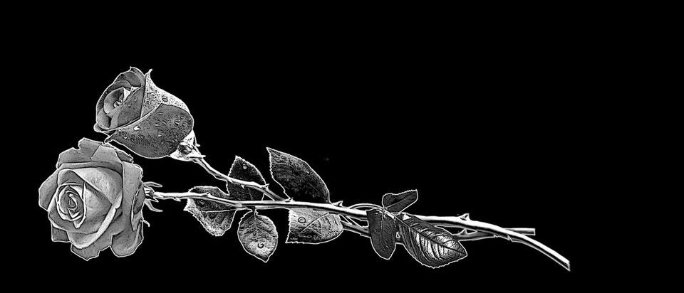 розы-для-гравировки.jpg