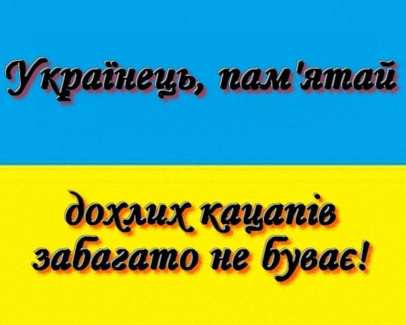 Одного українського воїна поранено на Донбасі. Знищено трьох терористів, за добу - 11 обстрілів, - штаб - Цензор.НЕТ 9532