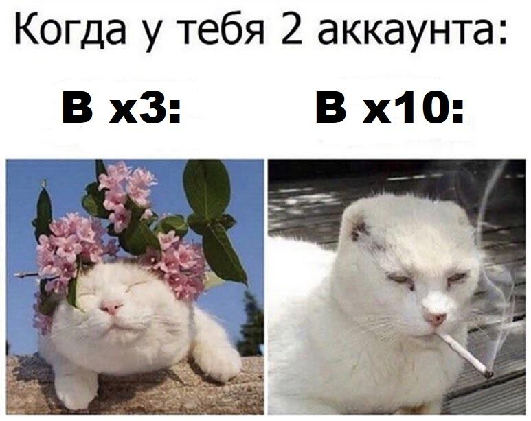 49a0a9f1062a95a0b71534b5a038402f.jpg
