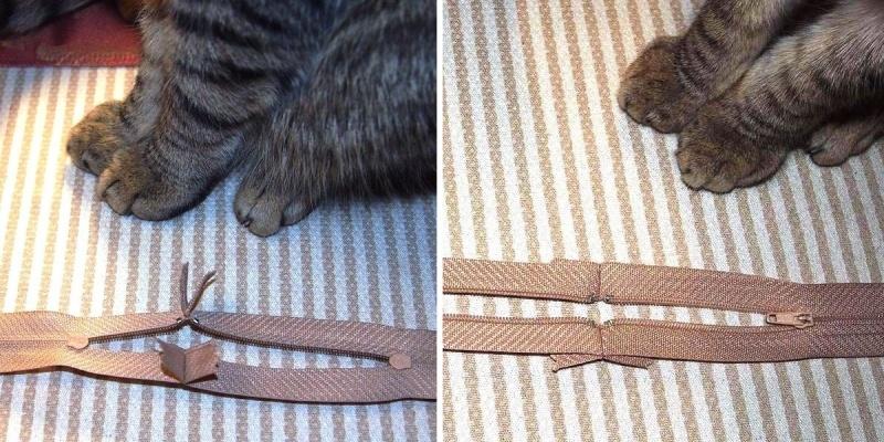 Подушка для кота