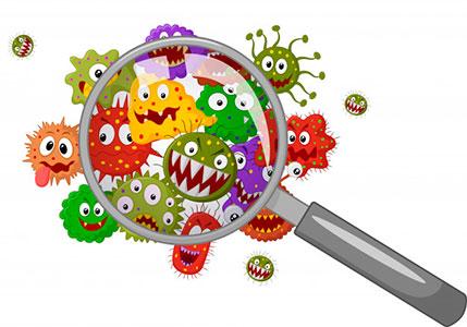 bakterii.jpg