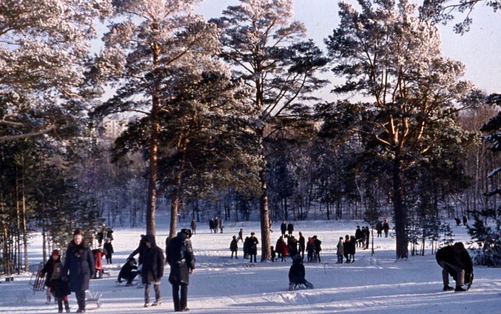 Парк-Степногорска.jpg