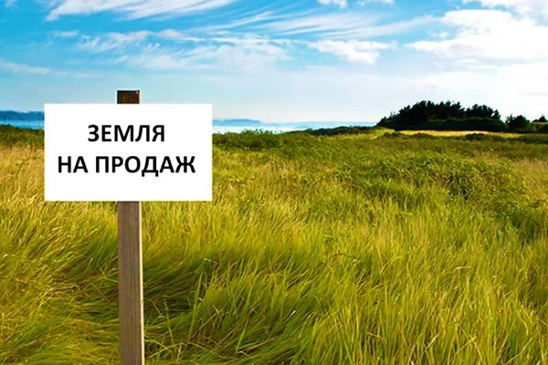 """Главные мифы о продаже земли. Ликбез для безземельных """"крестьян"""""""