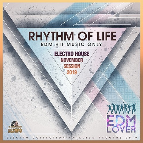 VA - Rhythm Of Life: Electro House Session (2019)