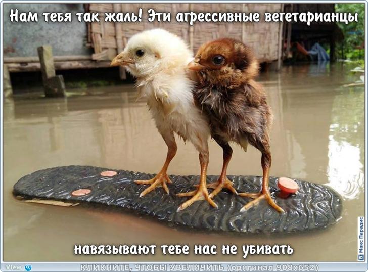 https://s8.hostingkartinok.com/uploads/images/2019/12/e57ea59c4515bafabaaad5b326aa116b.jpg