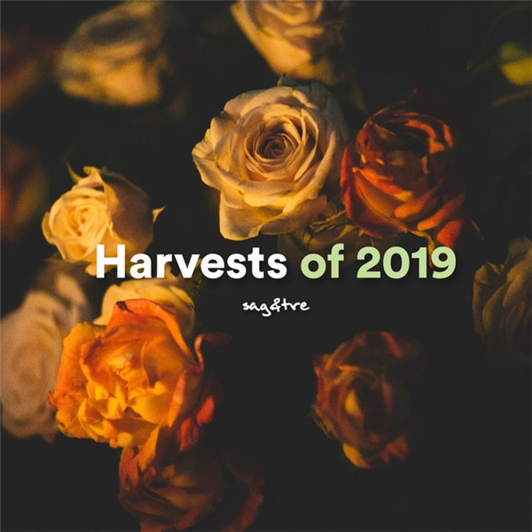 VA - David Soto: Harvests of 2019 (2020)