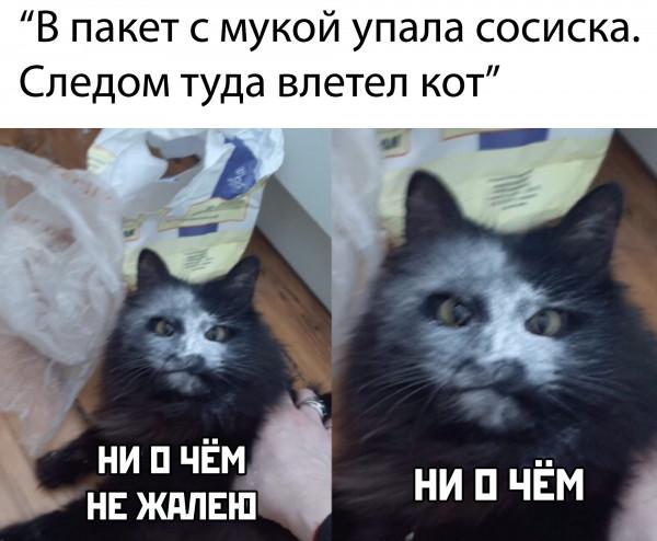 mJZypfMVueQ.jpg