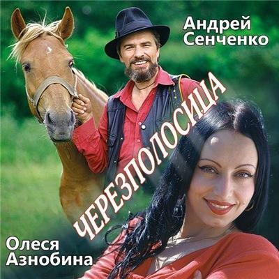 Андрей Сенченко - Черезполосица (2020)