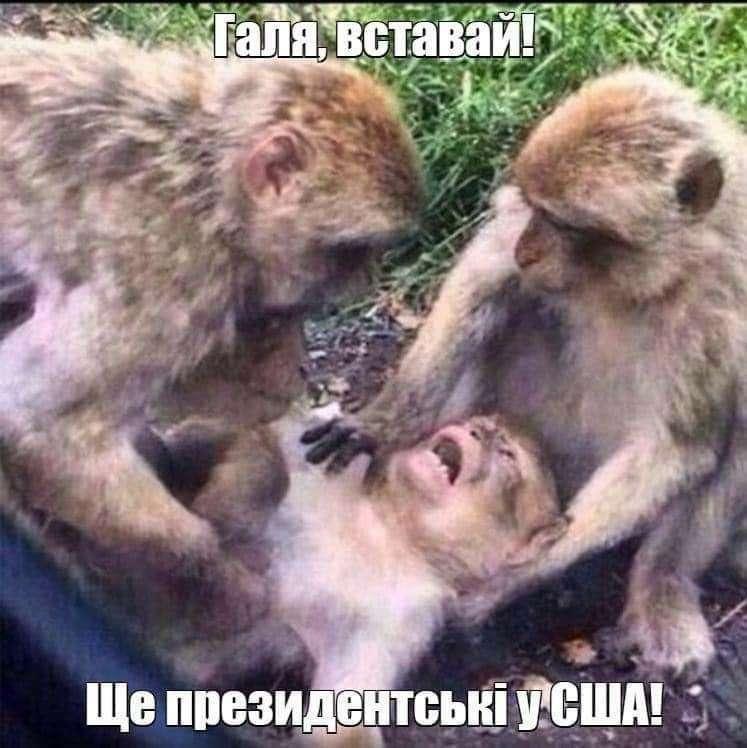 ukraina_news_1604048412.jpg