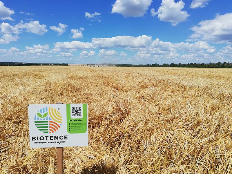Отличный урожай с удобрениями Биотенс