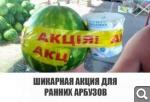 [Изображение: e7151ec23fff268491932a55359c887e.png]