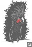 """Голосование """"Попугаи"""" *"""