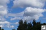 """Голосование """"Плывут по небу облака..."""" *"""