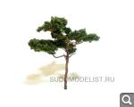 Новости от SudoModelist.ru - Страница 19 B81f41b602898c1b0d09bbed1aff132a